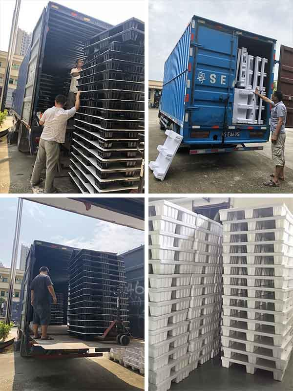 termite proof pallet freight shipping for sale shelves